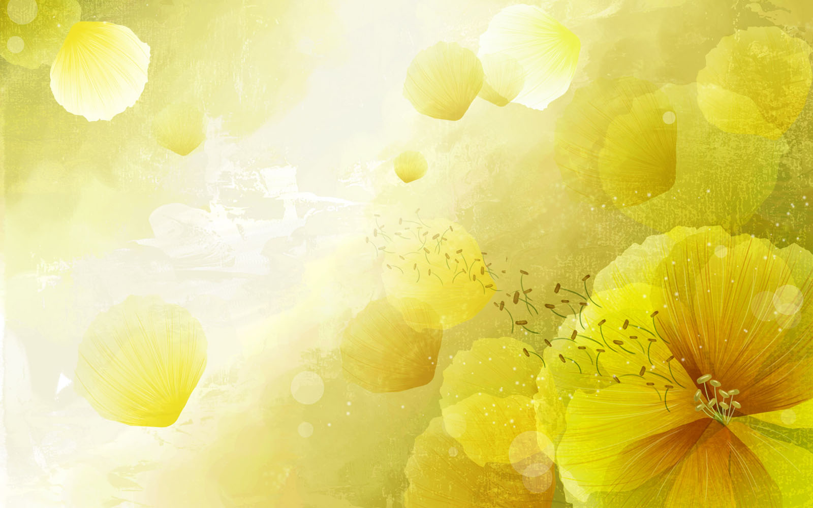 abstract-charming-yellow-flowers-vector-backgrounds.jpg - Tx Redbones